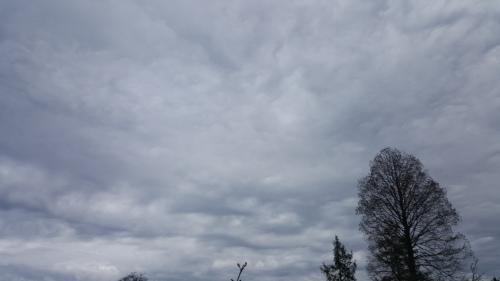 April 12 2017